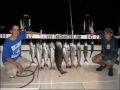 2009 Fishing Season_039